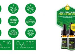Essayez qui ne contient que des ingrédients naturels Organic Line CBD